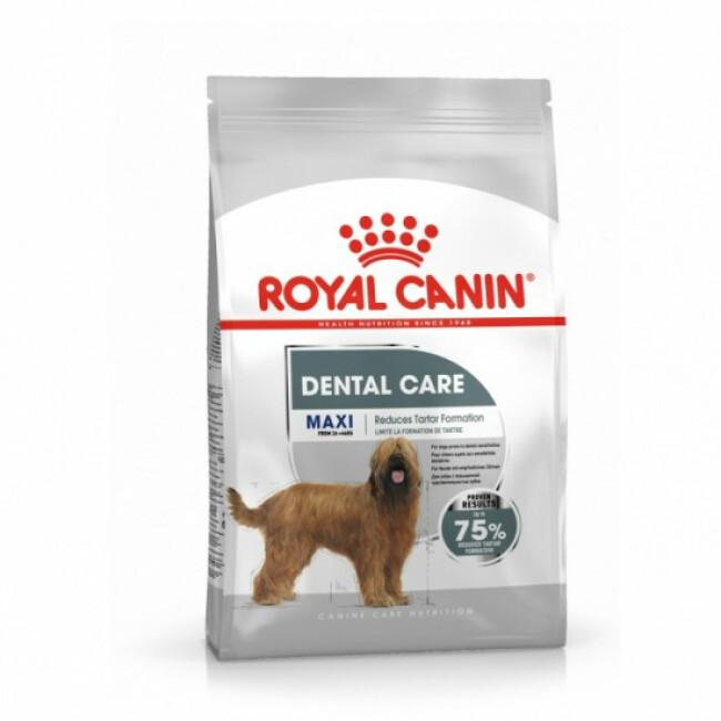 Croquettes pour chien de 26 à 44 kg Maxi Dental Care Adulte Royal Canin