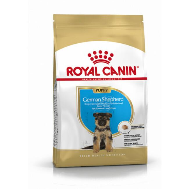 Croquettes pour chien junior Berger Allemand Royal Canin Puppy