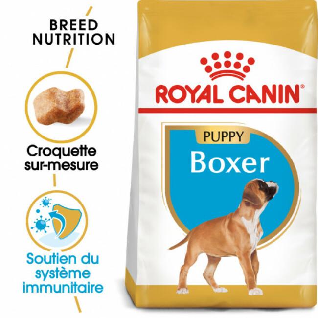 Croquettes pour chien junior Boxer Royal Canin Puppy