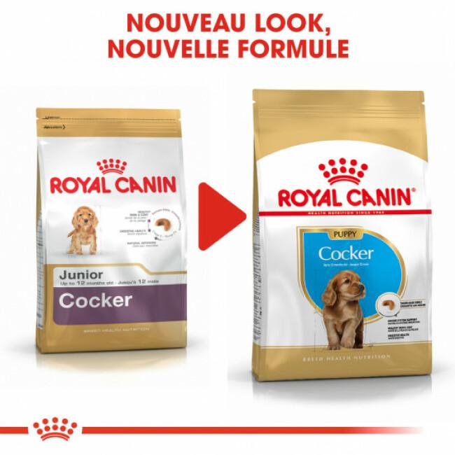 Croquettes pour chien junior Royal Canin Cocker Sac 3 kg