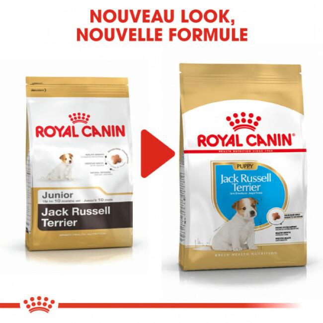 Croquettes pour chien junior Royal Canin Jack Russel Sac 3 kg