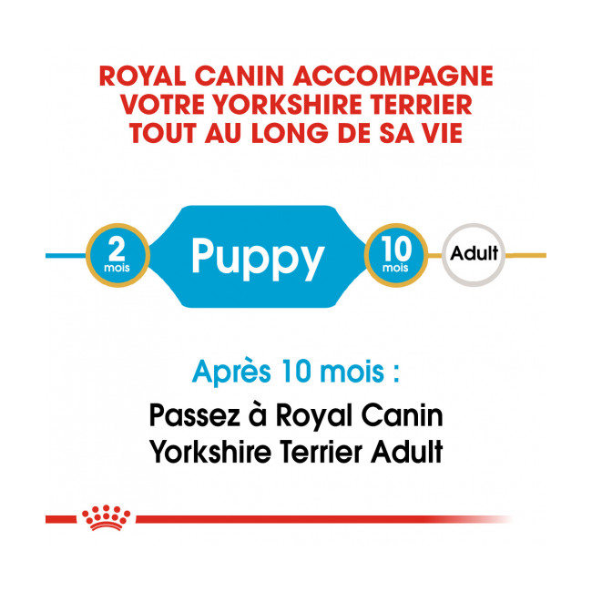 Croquettes pour chien junior Royal Canin Yorkshire Terrier 29