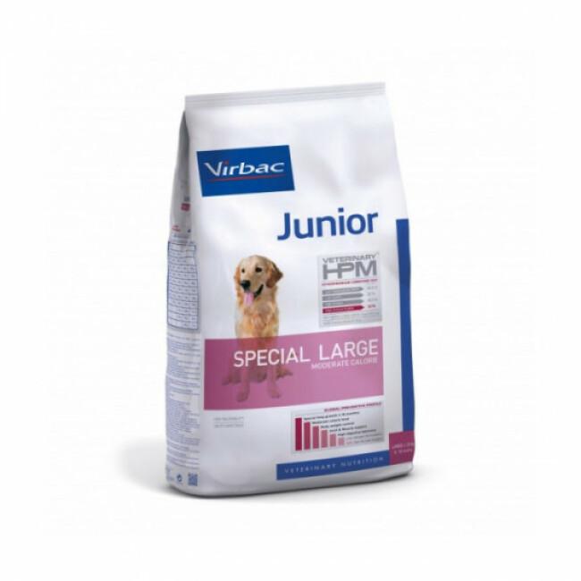 Croquettes pour chien junior special large HPM Virbac