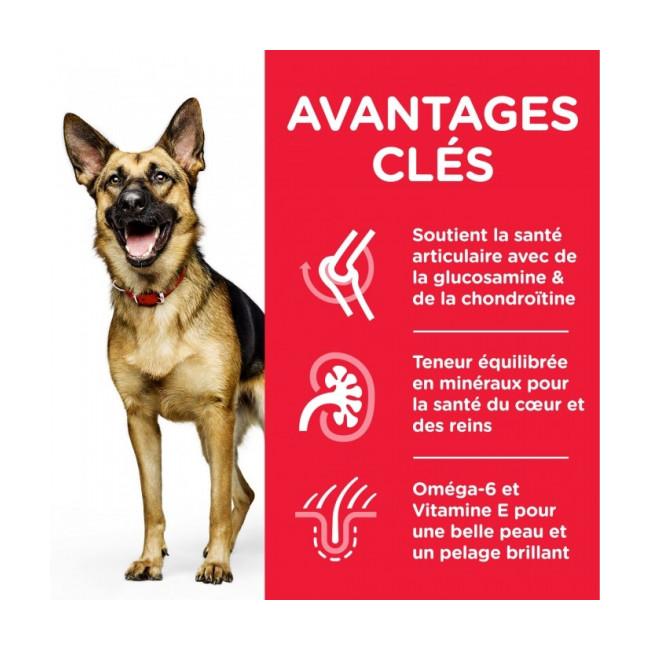 Croquettes pour chien mature actif 6+ grandes races Hill's Science Plan Longevity