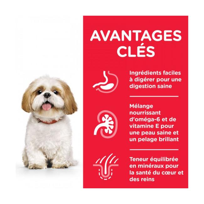 Croquettes pour chien mature actif petites races Hill's Science Plan Longevity