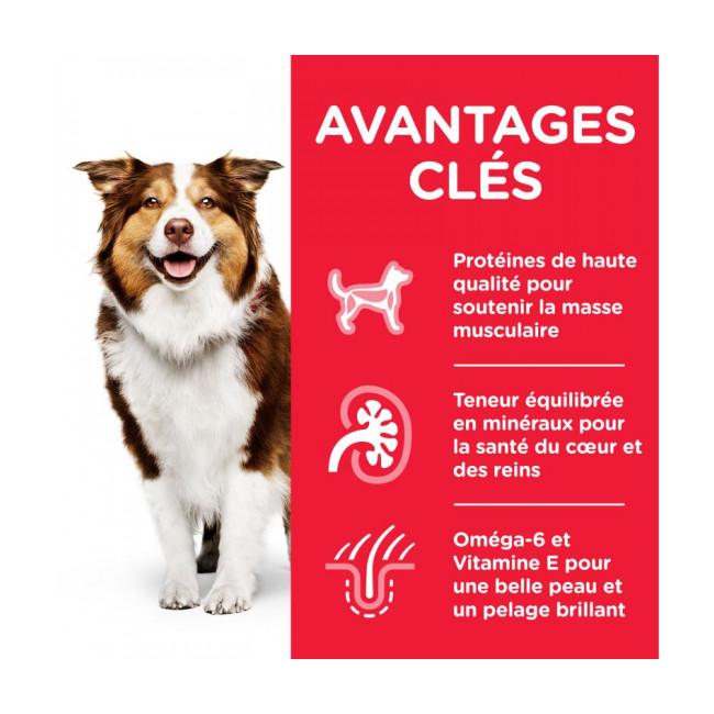 Croquettes pour chien mature Hill's Science Plan Vitalité et Longévité