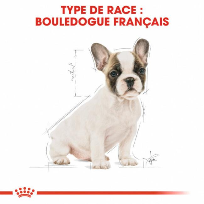 Croquettes pour chien Royal Canin Bouledogue Français junior