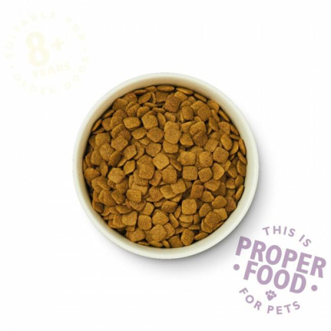 Croquettes pour chien senior 8 + au saumon et truite Lily's Kitchen Sac 7 kg