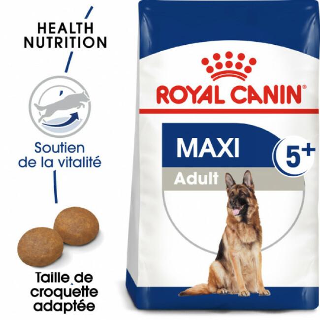 Croquettes pour chien senior mature 5+ grande race Royal Canin