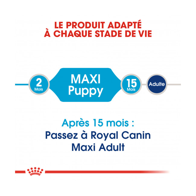 Croquettes pour chiot grande race Puppy Maxi Royal Canin