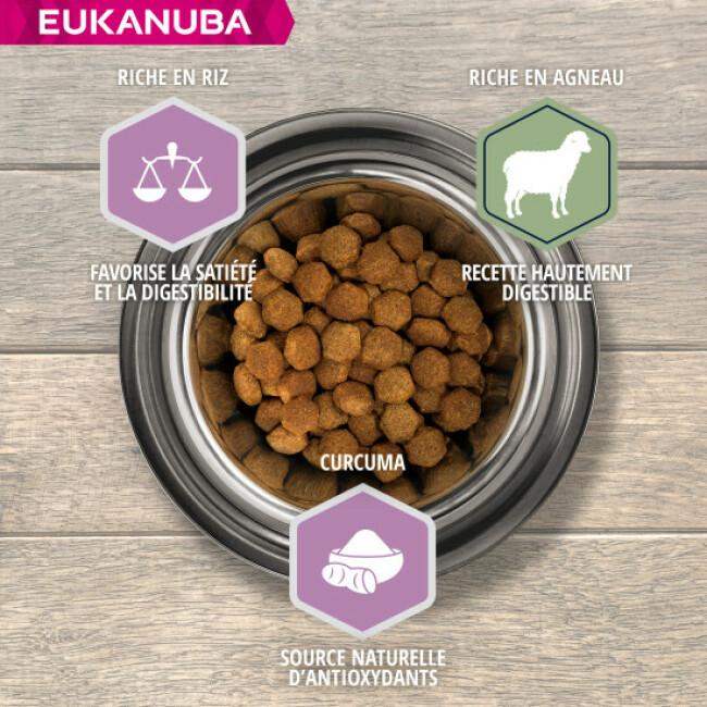 Croquettes pour chiot Junior Eukanuba Agneau et Riz