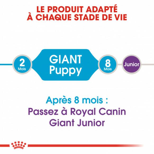 Croquettes pour chiots de très grande race Royal Canin Giant Puppy