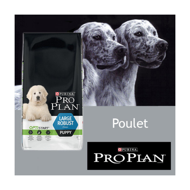 Croquettes Pro Plan chiot Large Robust Puppy poulet