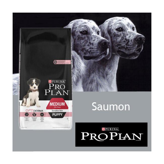 Croquettes Pro Plan chiot Puppy Opti Medium Sensitive au saumon