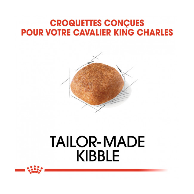 Croquettes Royal Canin Cavalier King Charles 27 Adulte