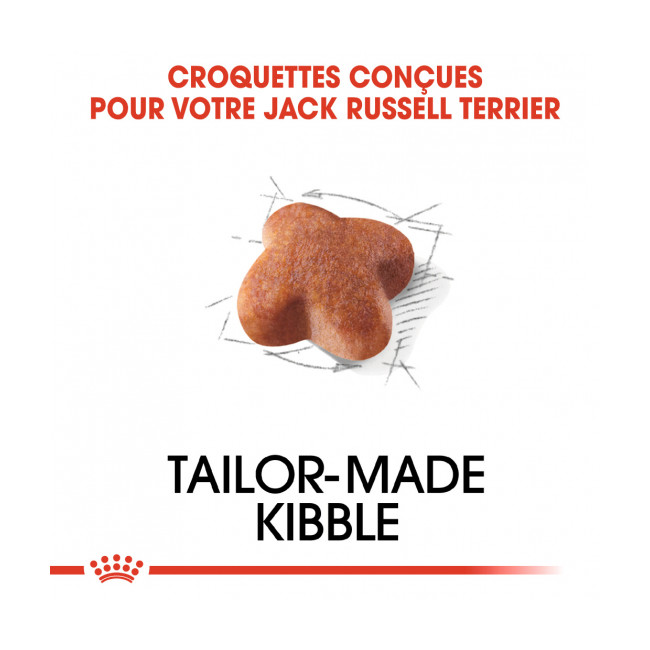 Croquettes Royal Canin Jack Russel Adulte