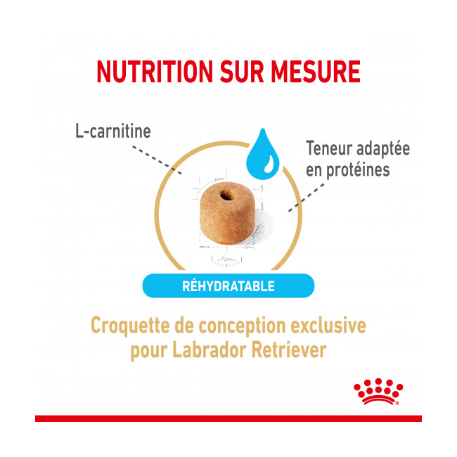 Croquettes Royal Canin Labrador Adulte 5+