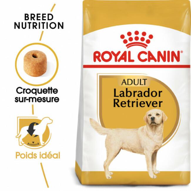 Croquettes Royal Canin Labrador Retriever Adulte
