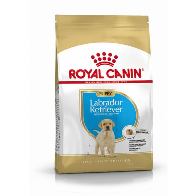 Croquettes Royal Canin Labrador Retriever Junior