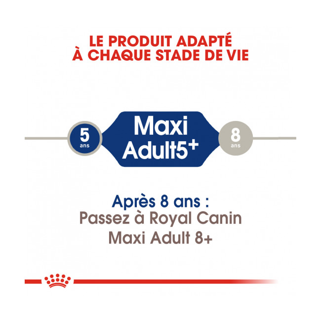 Croquettes Royal Canin Maxi Adulte 5+