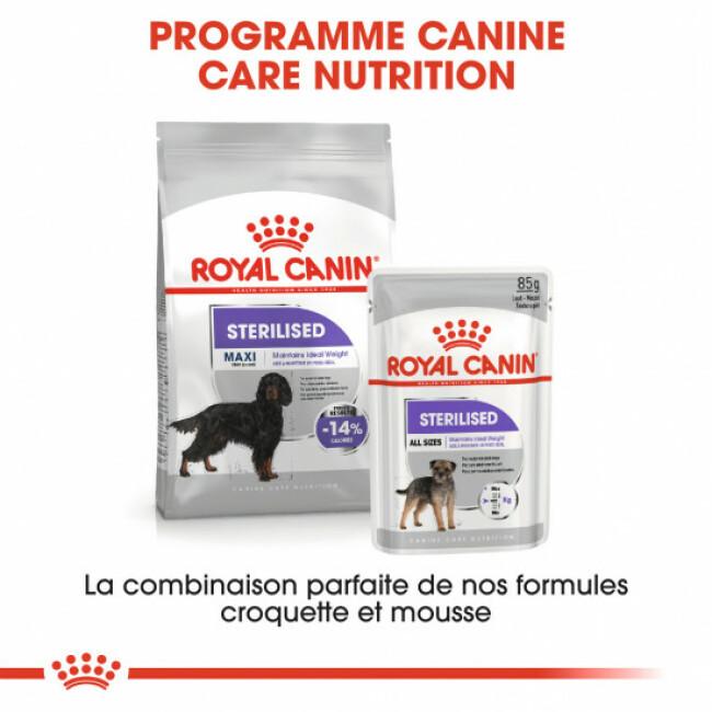 Croquettes Royal Canin Maxi Adulte Sterilised
