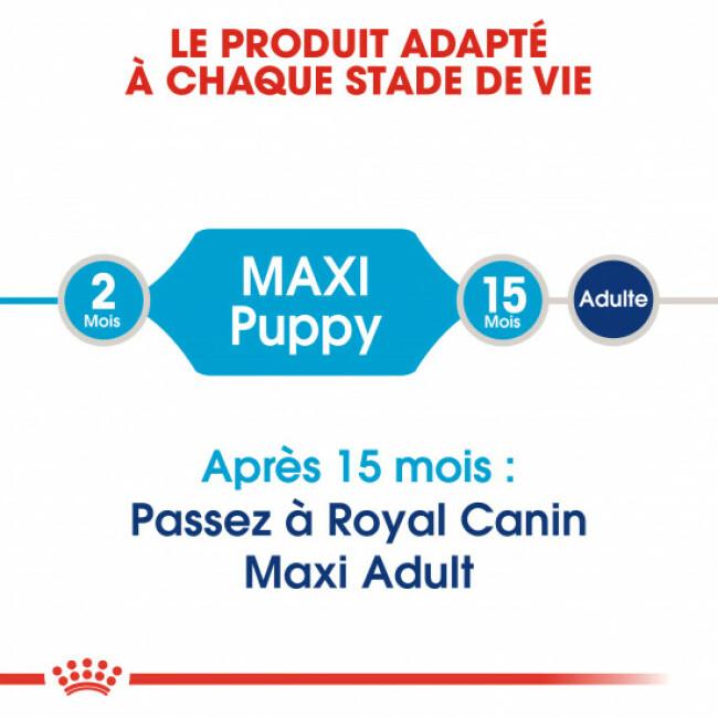 Croquettes Royal Canin Maxi Puppy Junior