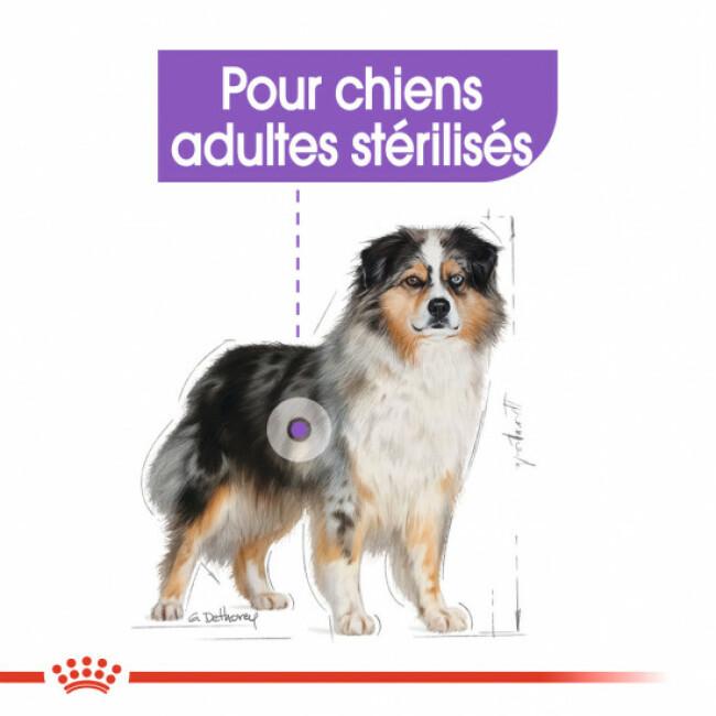 Croquettes Royal Canin Medium Adulte Sterilised