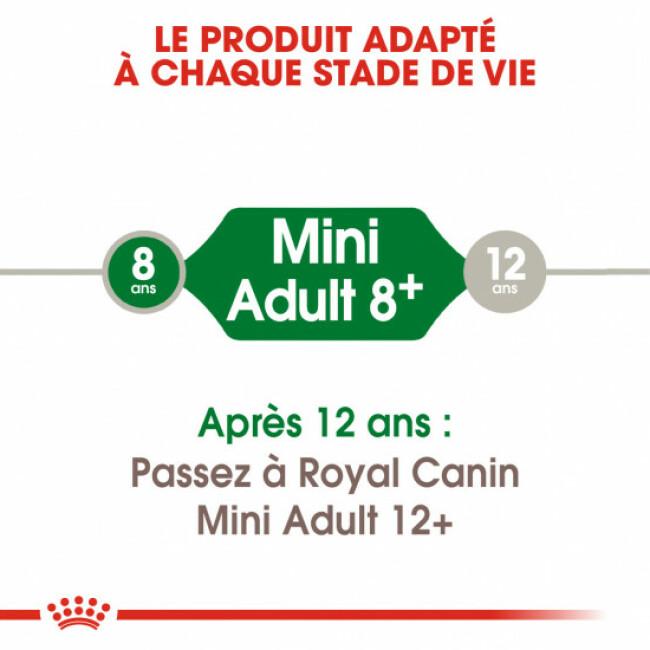 Croquettes Royal Canin Mini Adulte +8