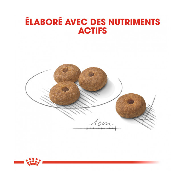 Croquettes Royal Canin Mini Adulte Sterilised