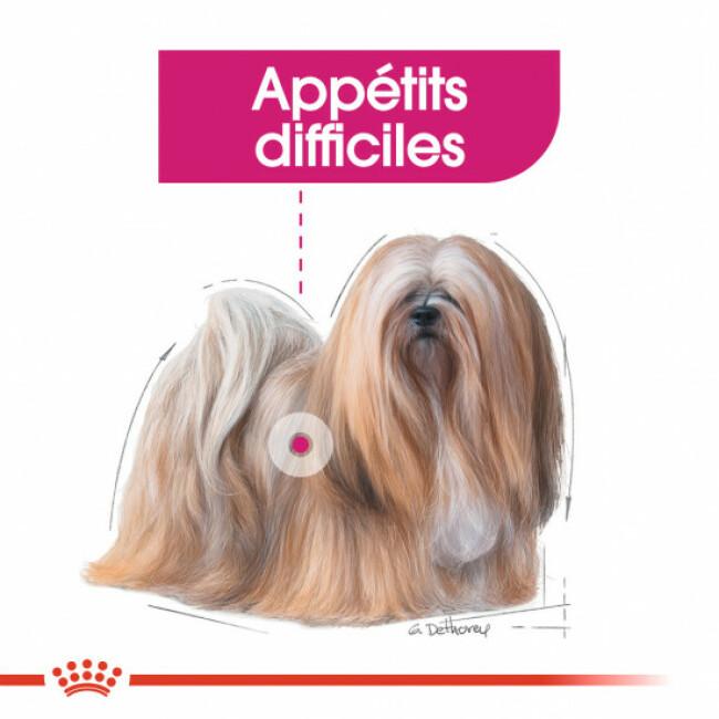 Croquettes Royal Canin Mini Exigent