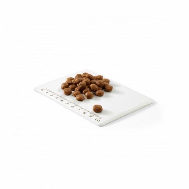 Croquettes sans céréales Natural Selection Schesir à la Dinde pour chat stérilisé