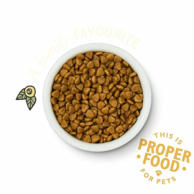 Croquettes sans céréales pour chat adulte au poulet et herbes Lily's Kitchen