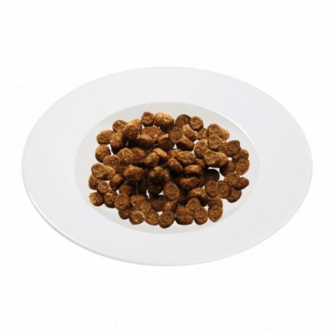 Croquettes Schesir pour chat anti-boules de poils Sac 1,5 kg