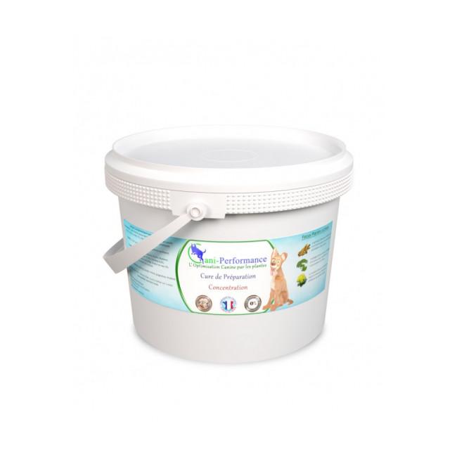 Cure alimentaire de préparation concentration pour chien