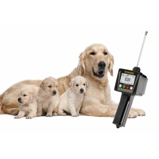 Détecteur de chaleur pour chienne nouvelle génération Draminski DOD2