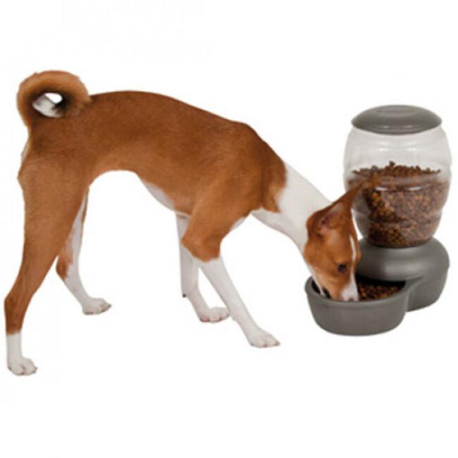 Distributeur automatique d'eau pour chien Petmate