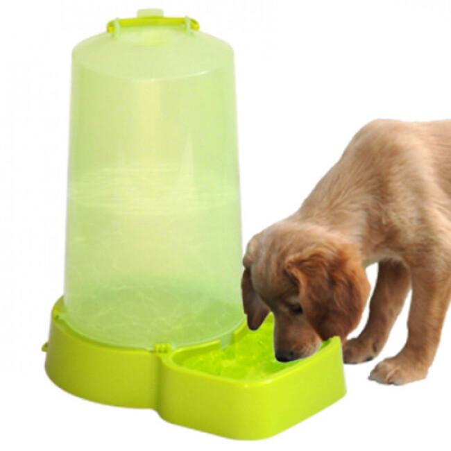 Distributeur d'eau à niveau constant Afleau pour chien