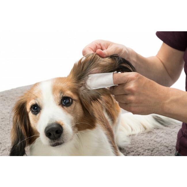 Doigtiers à usage unique soin des oreilles pour chien et chat