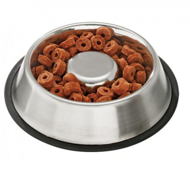 Ecuelle anti glouton Inox Slim & Slow pour chien