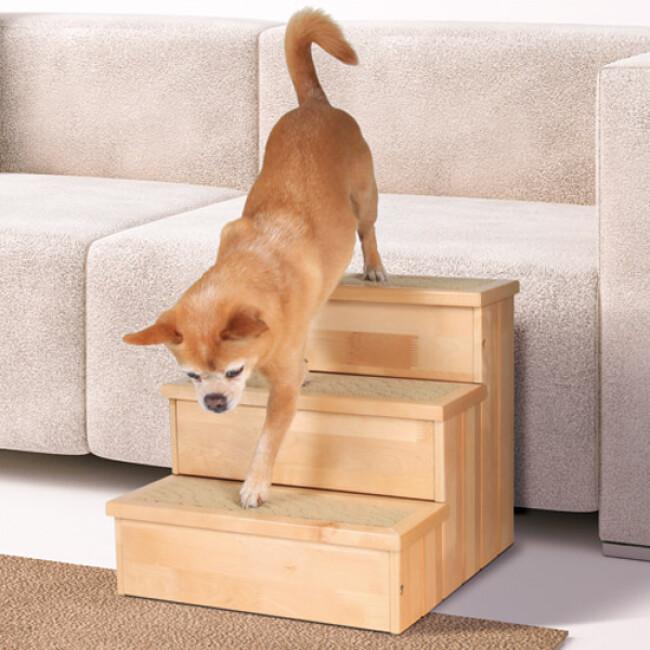 Escalier coffre pour chien et chat âgé ou handicapé