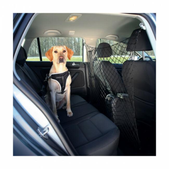 Filet de voiture pour chien Friends On Tour