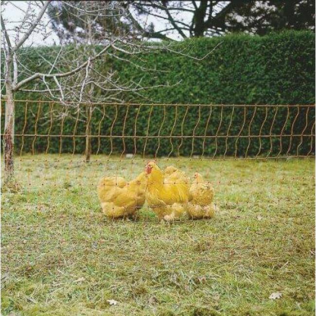 Filet poules 50 m simple pointe AKO orange électrifiable Hauteur 112 cm