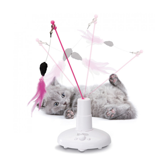 Flitter Fun jeu animé pour chat