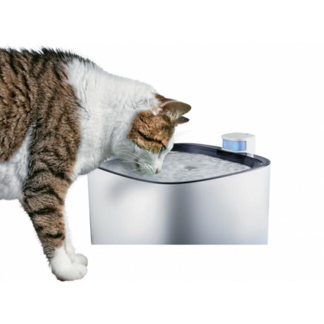 Fontaine à eau silencieuse Iguazu pour chat et petit chien
