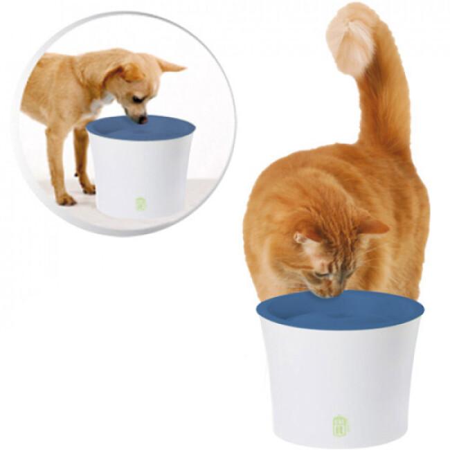 Fontaine distributeur d'eau Fresh Clear pour chien et chat