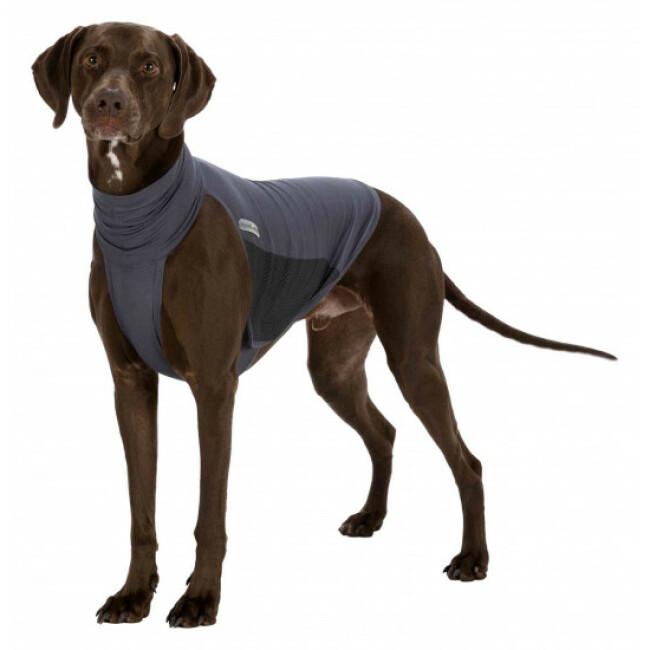Gilet anti-parasitaire pour chien Insect Shield