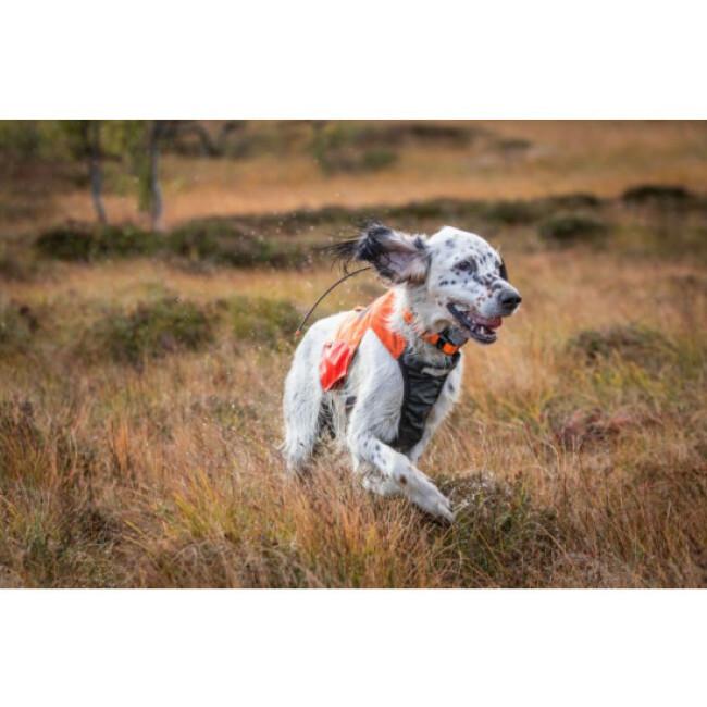 Gilet de chasse pour chien Protector NON-STOP Dogwear