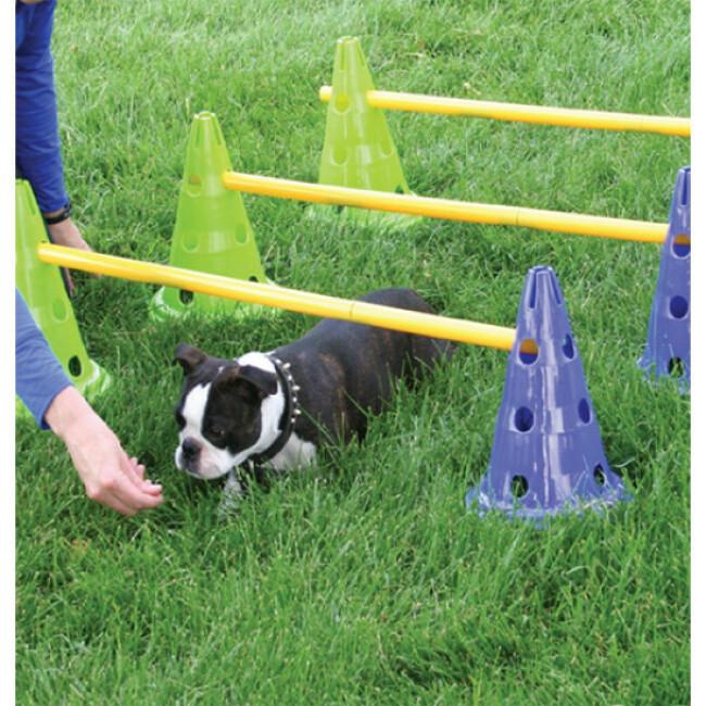 Kit haies et plots d'agility pour chien FitPaws Canine Gym