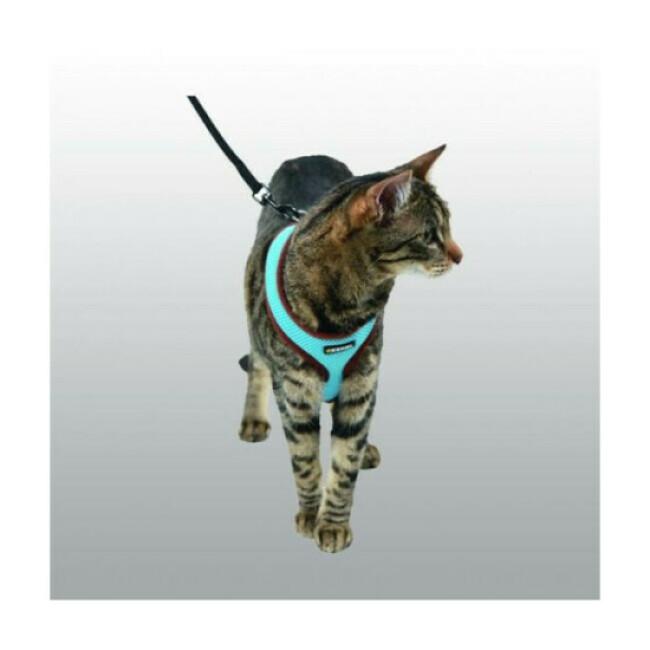Harnais Active Kerbl pour chat