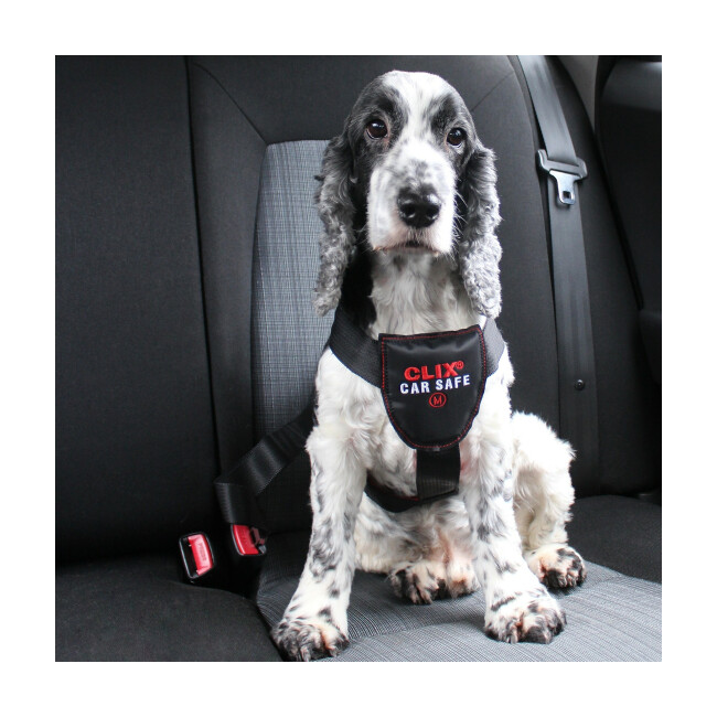 Harnais Clix Car Safe de voiture pour chien